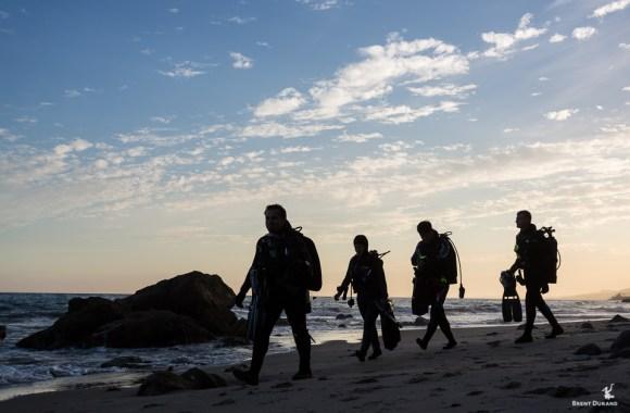 california-beach-and-shore-diving