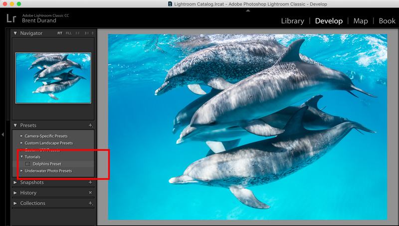 Screenshot showing how to apply a develop preset.