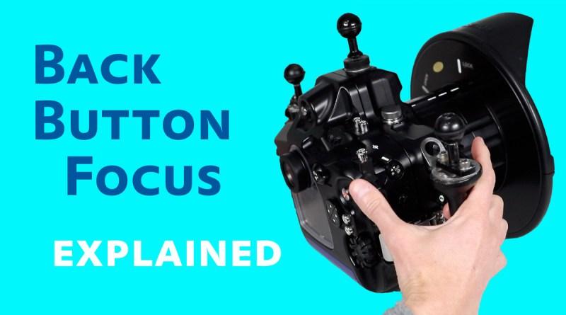 back button focus underwater