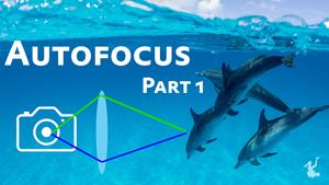 autofocus video tutorial miniseries - part 1