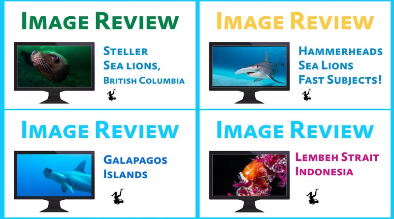 Image Review Video Series