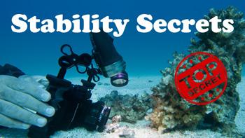 Macro Stability Secrets video tutorial thumbnail