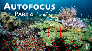 autofocus miniseries on plane of focus and hyperfocal distance
