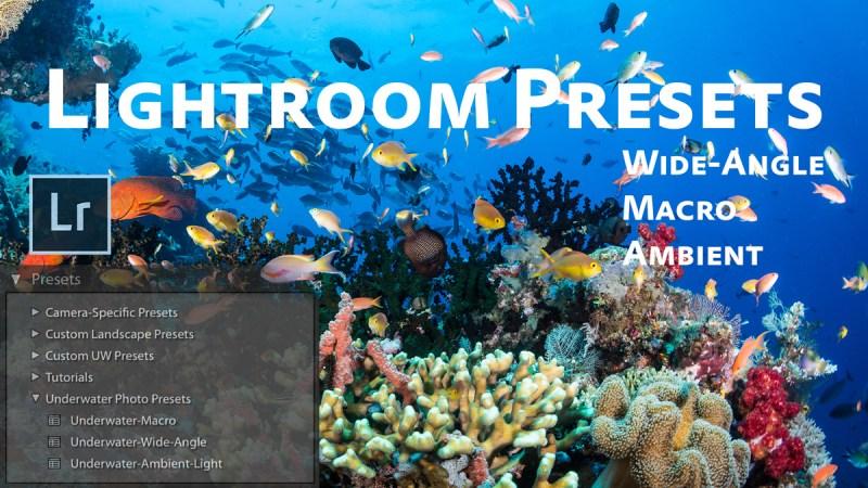 Free Lightroom Underwater Photo Presets | Brent Durand