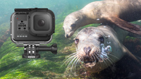 GoPro Underwater Video Tips