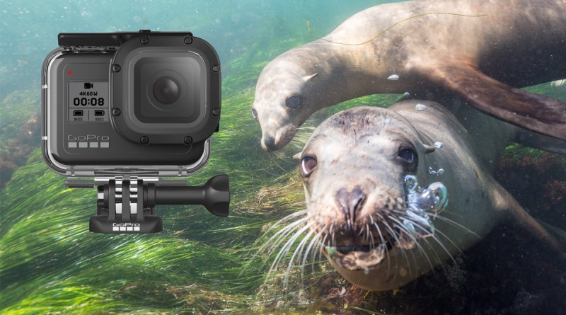 GoPro Underwater Video Tips
