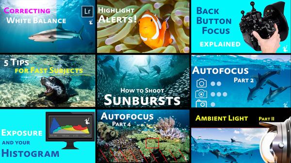 underwater photography video tutorials
