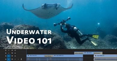 Underwater Video Basics & Settings