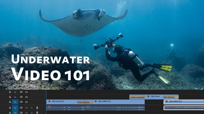 Underwater Video Basics & Settings