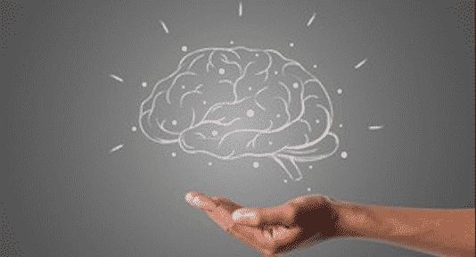 Neuroplasticity: How To Rewire Your Brain