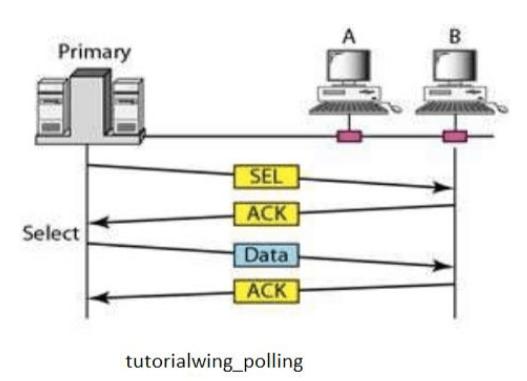 Tutorialwing Polling Tutorial Example of Polling Tutorial Example What is Polling