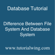 Tutorialwing dbms difference between traditional file system and database system