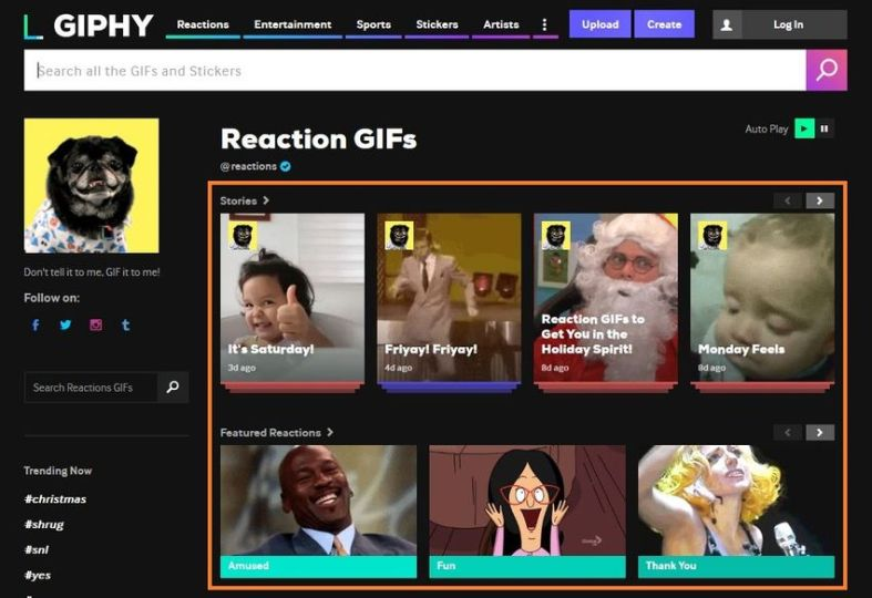 Visit GIPHY and find a GIF