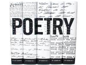 The Craft of Poetry (Non-Interactive)