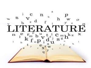 BGCSE LITERATURE OVERVIEW