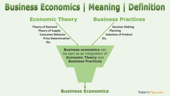 Meaning of Business Economics