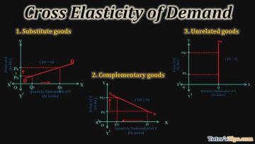 Cross Elasticity of Demand 1 - Business Economics