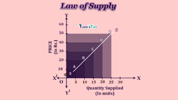 supply min 2 - Business Economics