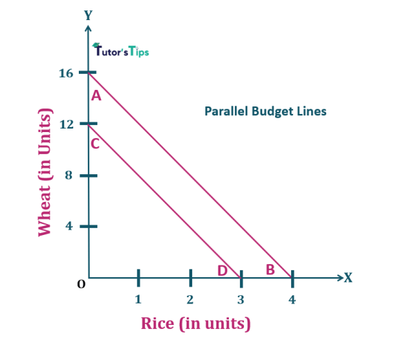 3.Parallel budget lines-Properties of Budget Line