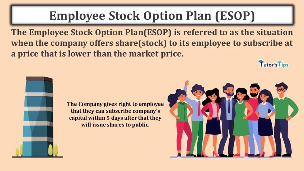 Employee Stock Option Plan (ESOP)