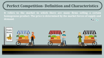 Perfect Competition Definition and Characteristics min - Business Economics