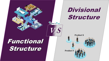 Difference between FDifference between Functional and Divisional Structureunctional and Divisional Structure min - Differences - Business Studies