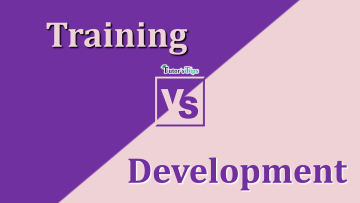 difference between Training and Development min - Differences - Business Studies