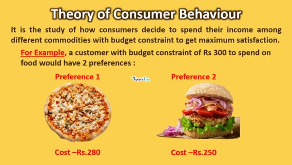 thoery-of-consumer-behaviour-min
