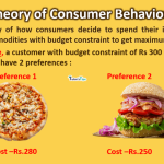 thoery-of-consumer-behaviour-min