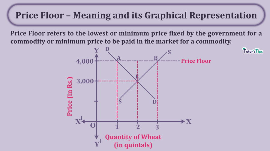 Price-Floor–Meaning-and-its-Graphical-Representation-min