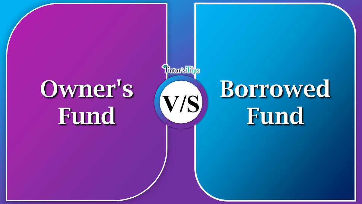 Difference-between-Owners-Fund-and-Borrowed-Fund-min-1