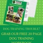 Tutor Your Dog Free Online Dog Training Advice