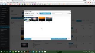 Tutoriel WordPress – Modification d'une galerie photo