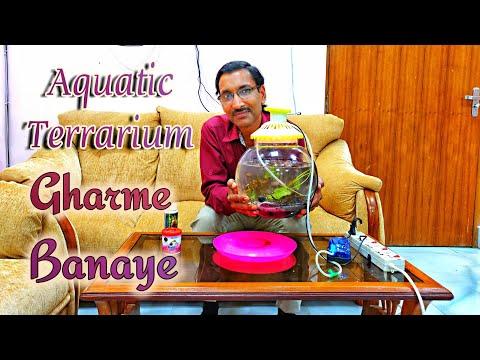 Gharme Aquatic Terrarium ya Aquarium Kaise Banaye ?
