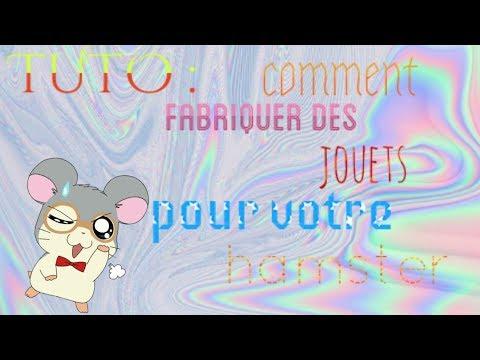 TUTO: comment fabriquer des jouets pour votre hamster ! ^-^