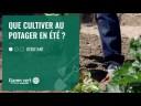[TUTO] Que cultiver au potager en été ? – Jardinerie Gamm vert