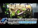 Comment faire un terrarium tropical pour dendrobates !