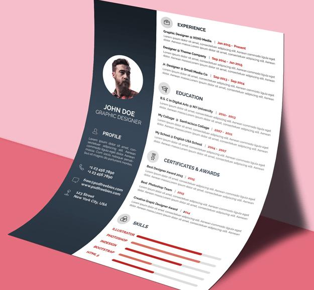 Free Professional CV/Resume Template