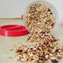 granola dispensa healthy fit avena oats muesli nuts