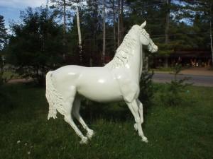 Whitehorse 16