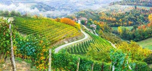 Piemonte tutte le notizie Tutto sulla Regione Piemonte cronaca sport spettacoli appuntamenti retroscena eventi mostre e tanto altro! LEGGI!