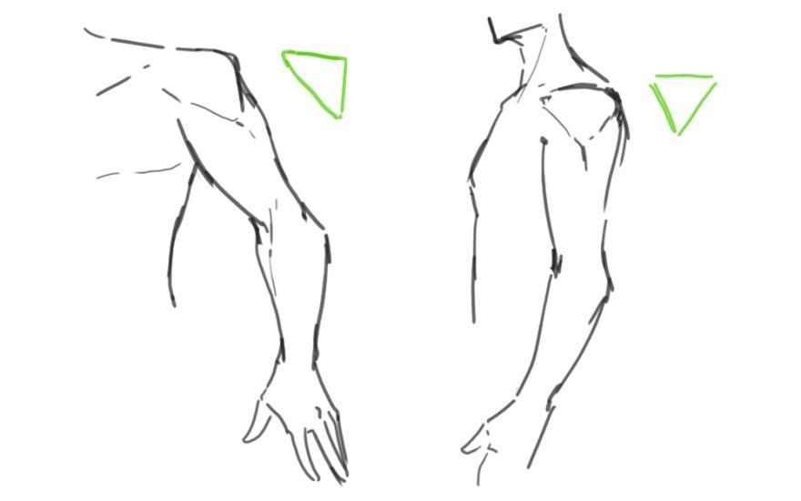 腕の描き方4