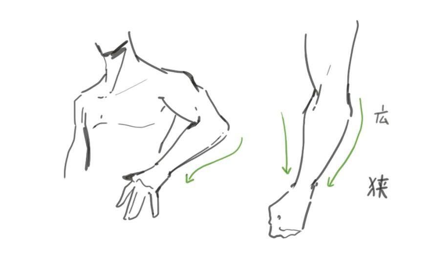 腕の描き方7