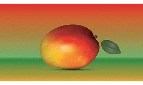 How to create a Realistic Mango in Adobe Illustrator