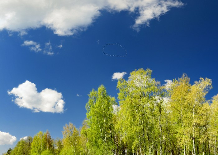 replace-sky-photo-grow-similar-01