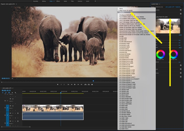 03-photoshop-luts-in-premiere
