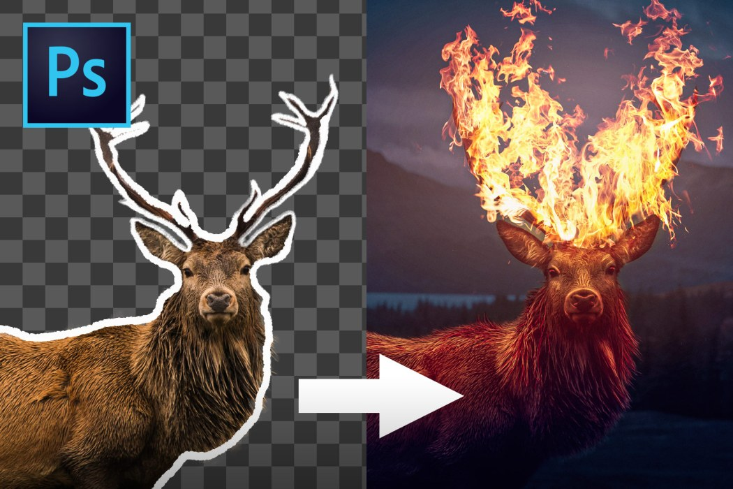 Flaming Elk Photo Manipulation in Photoshop