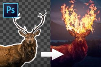 Flaming Elk Photo Manipulation in Photoshop