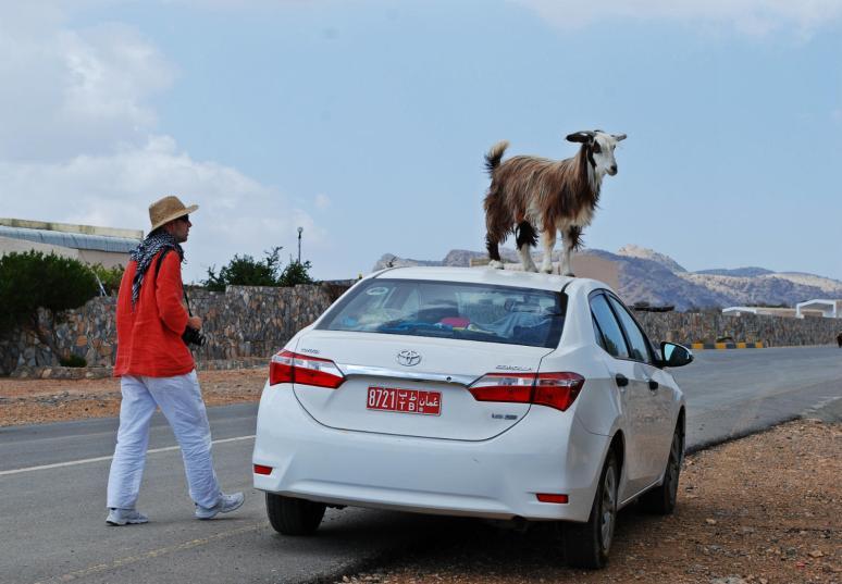 ... a tak mieszkańcy witają turystów