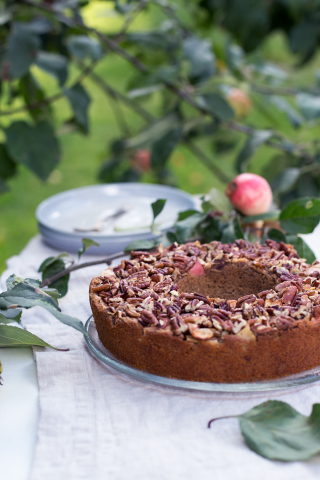 rustic apple cake (gluten + dairy free)